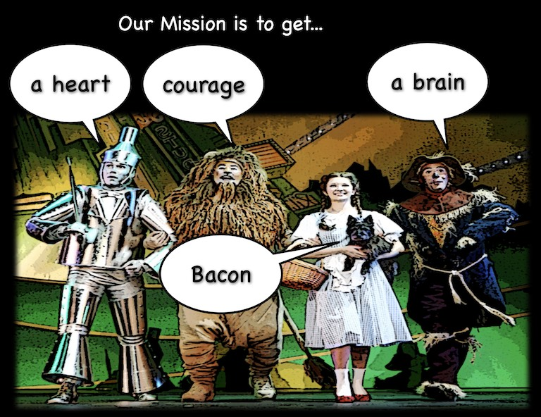 wizard of oz mission tool