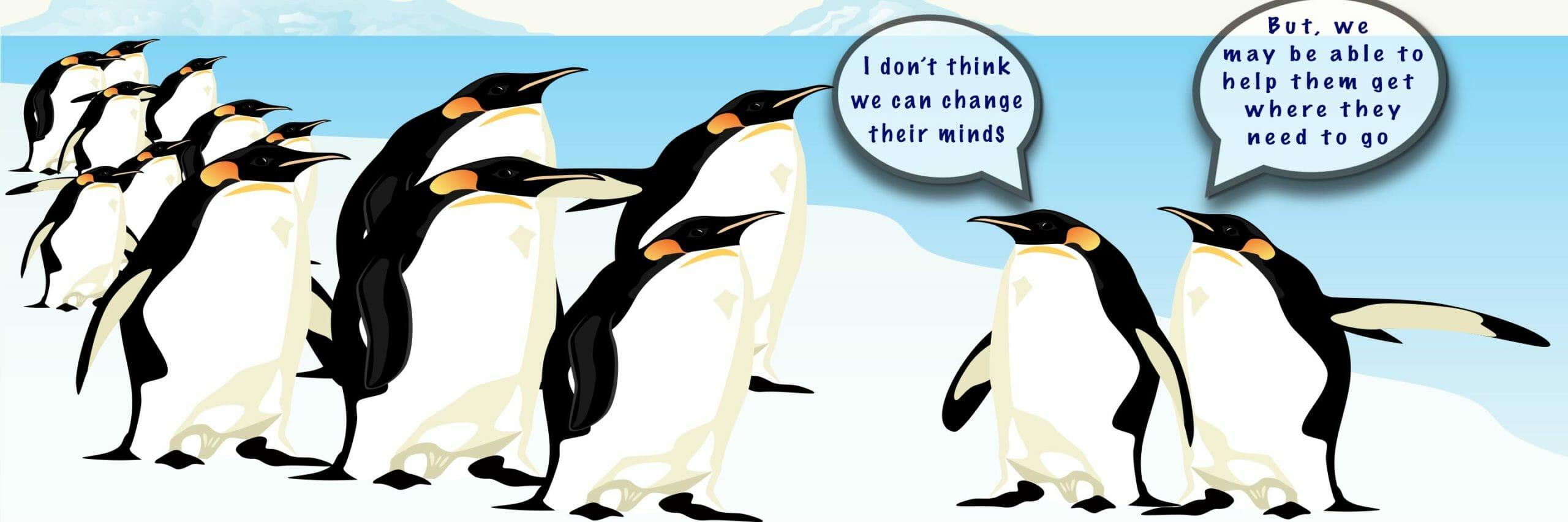 penguins debate leadership